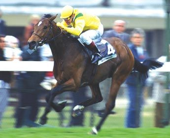 Helissio fue Cartier European Horse of the Year en 1.996